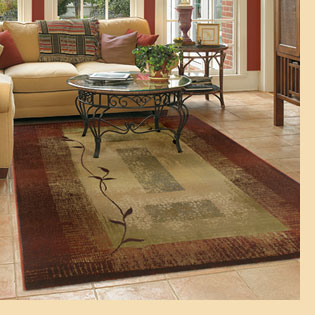 area carpet cleaning FCNXXZE
