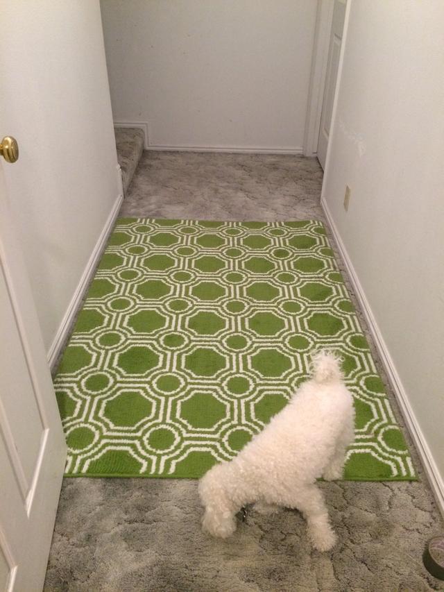 area carpet flip the area rug over. walk across it a few times to help TZHMCDL