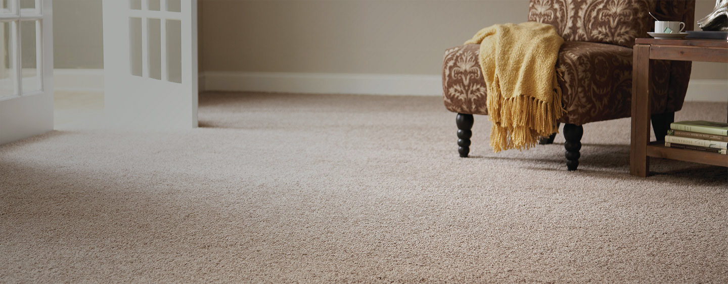 carpet floor be the true master of your home with the perfect stainmaster carpet GMGUTMA