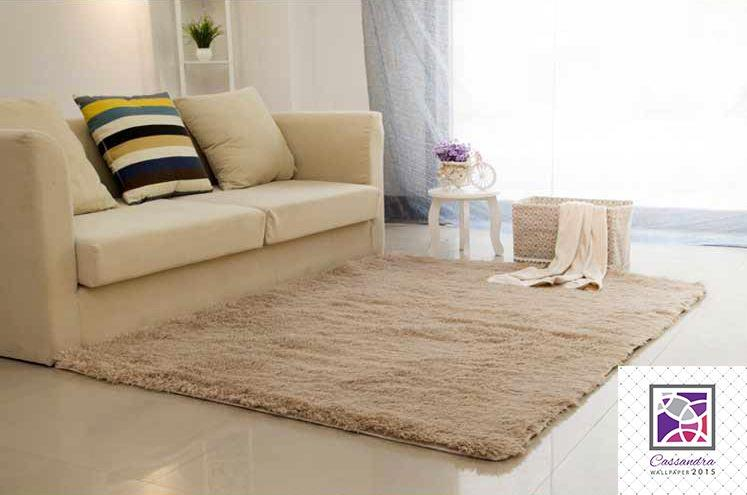 carpet for home | living room | bedroom | 10 colours 120x200cm DYJAOYX