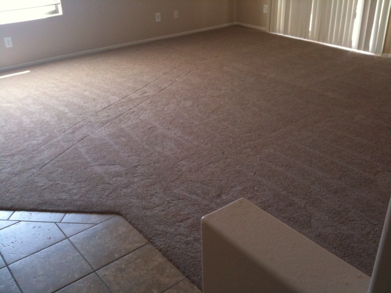 carpet for house new carpet for our entire house - home makeover diva | the home YVMFPLO