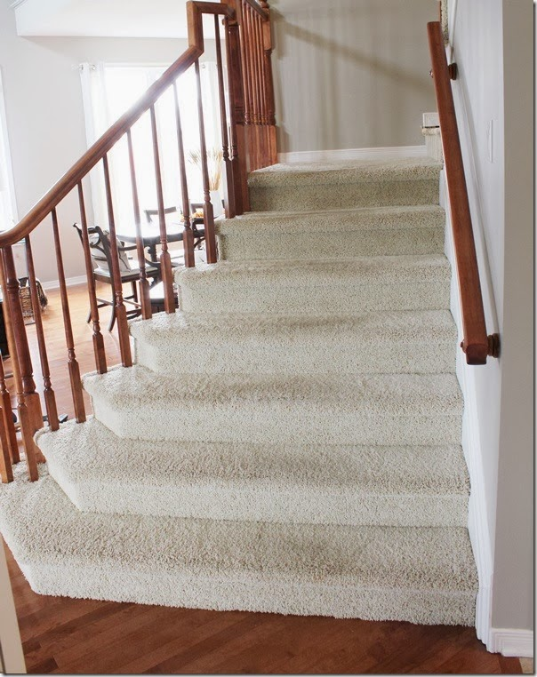 Carpet stairs home design stairs carpet to wood from carpet stairs to wood stair carpeting IUPKBBH