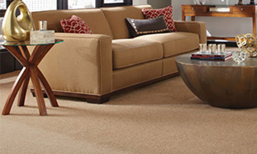 carpets and flooring online carpet youu0027ll love QJLSLOC
