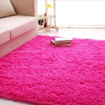 Cute rugs for different areas