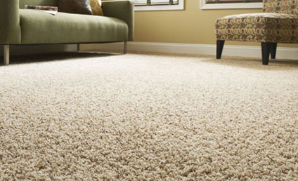 floor carpet carpet flooring NDJSLGY