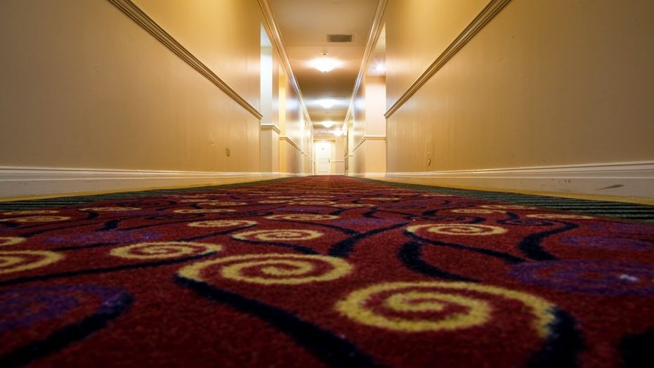 hotel carpet bill young has been documenting hotel carpets for years, but his instagram DFPDJRE