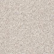 modern twist - z6821 shaw anso nylon carpet BUSYQFV