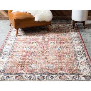orange rugs ballyu0027s terracotta area rug WSWFYFN