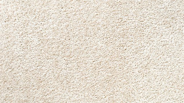 rug texture a glossary of carpets and rugs | realtor DGWIRVA