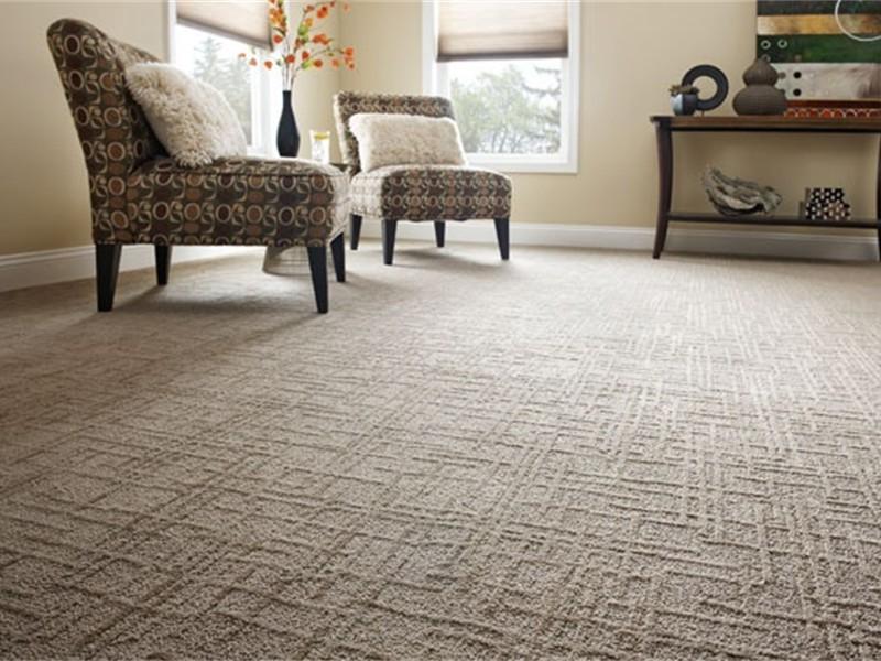 Shaw carpeting ... 2901e937937330242197a4e461cb87f2.jpg shaw carpet linear design pattern  carpet living room ... JDLBGYV