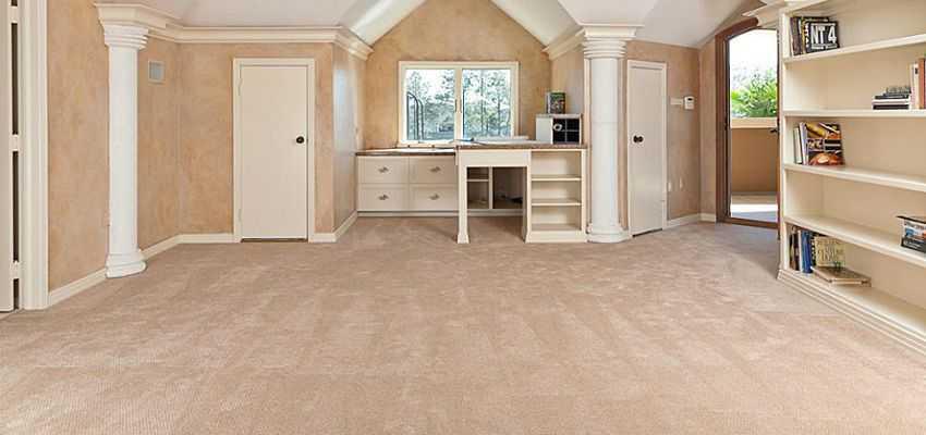 Shaw carpeting carpeting PKNJUNK