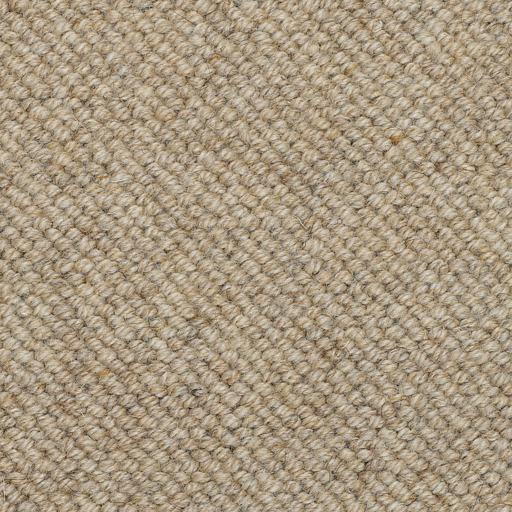 textured carpet beachcomber barnacle bcm0231 DDHKUUH
