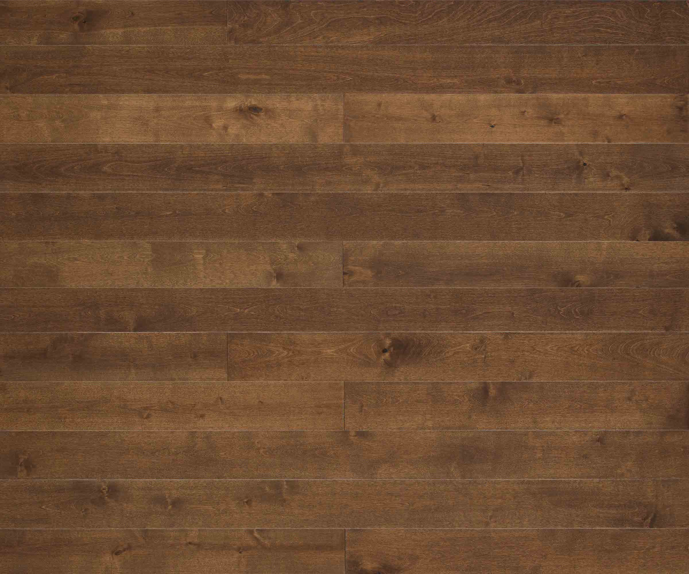 wood flooring texture dormer birch ZITYKPZ