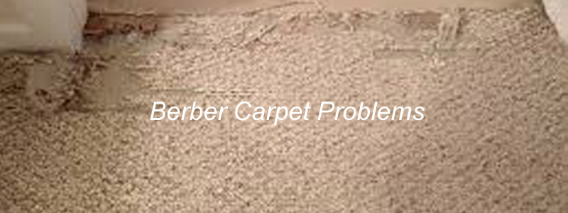 wool berber carpet berber carpet problems u0026 complaints - avoid issues with berber MLKDPKX