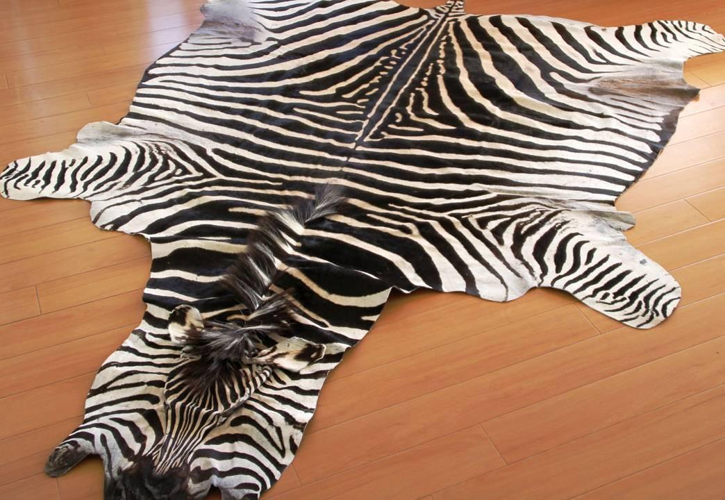 zebra rugs zebra hides and rugs VURNNBT