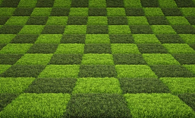 Environmentally Sustainable commercial Carpet Designs | Godfrey