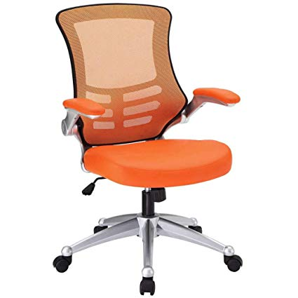Amazon.com : Cool Office Chairs - Ridgewood Mesh Desk Chairs