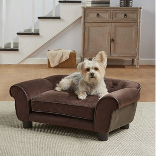 Sofa Dog Beds You'll Love | Wayfair