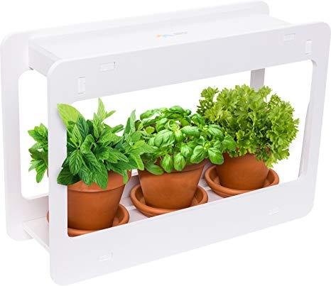 Amazon.com : Mindful Design LED Indoor Herb Garden - at Home Mini