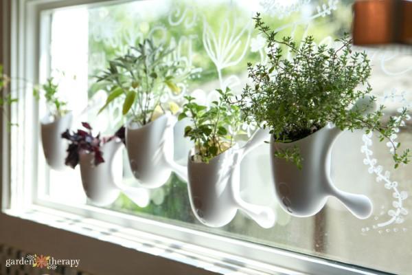 Window Herb Garden Kit - Garden Therapy®