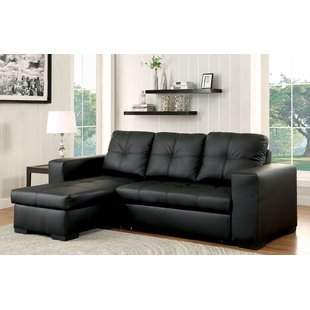 Stylish leather sectional sofa beds