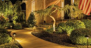 Trex Landscape Lighting | LED Landscape Lighting - Path, Spot