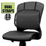 The need for the office chair back   support
