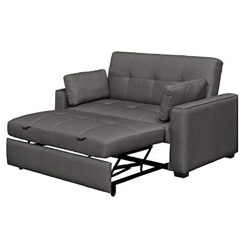 Queen Size Sofa Bed: Amazon.com