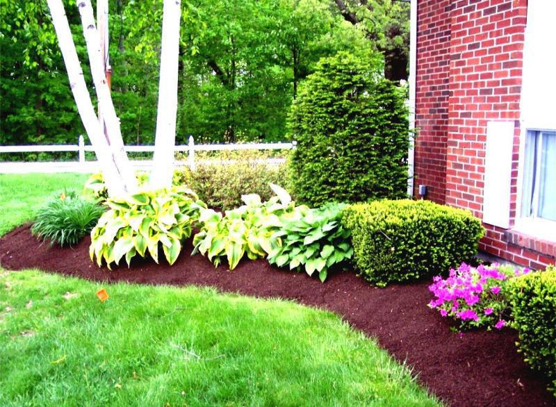 Do It Yourself Landscaping Simple Ideas : Acvap Homes - Simple