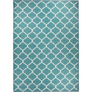 Small Accent Rugs | Wayfair