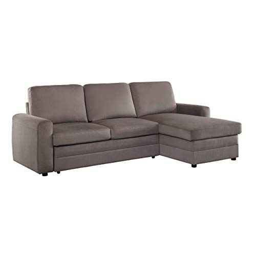Couch with Pull Out Bed: Amazon.com