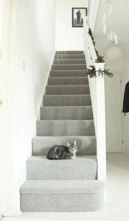 35 Stunning Stair Carpet Runner Ideas for Safety and Beauty