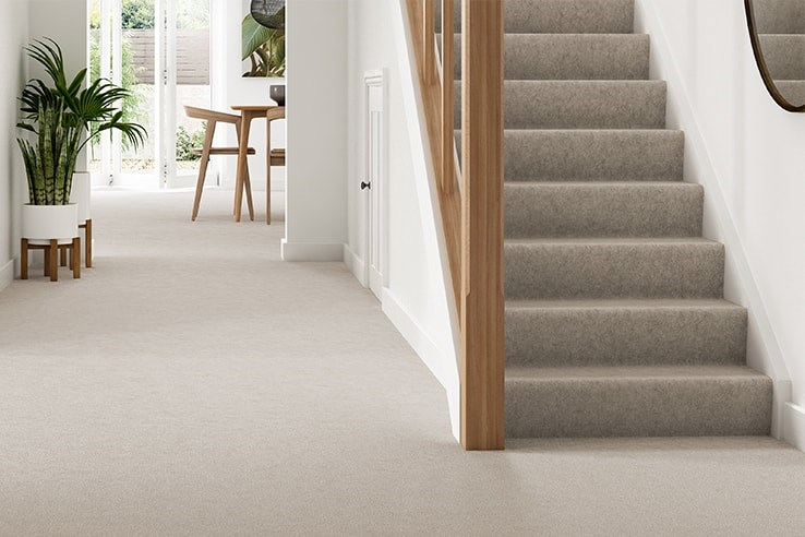 Carpet Stair be equipped how to install carpet on stairs be equipped